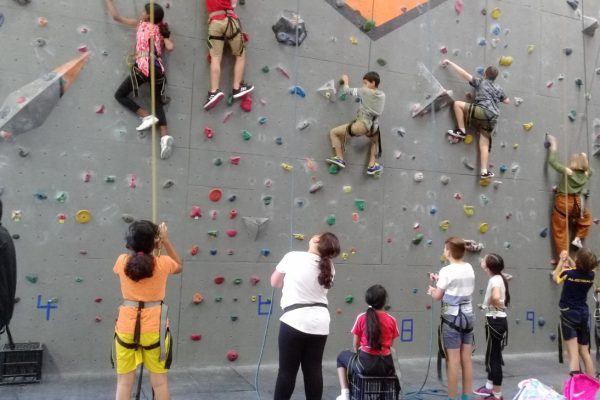 A wide shot of one of our walls at our Mitchell gym. Each of the five ropes in the photo are being used by young kids climbing for a school event.